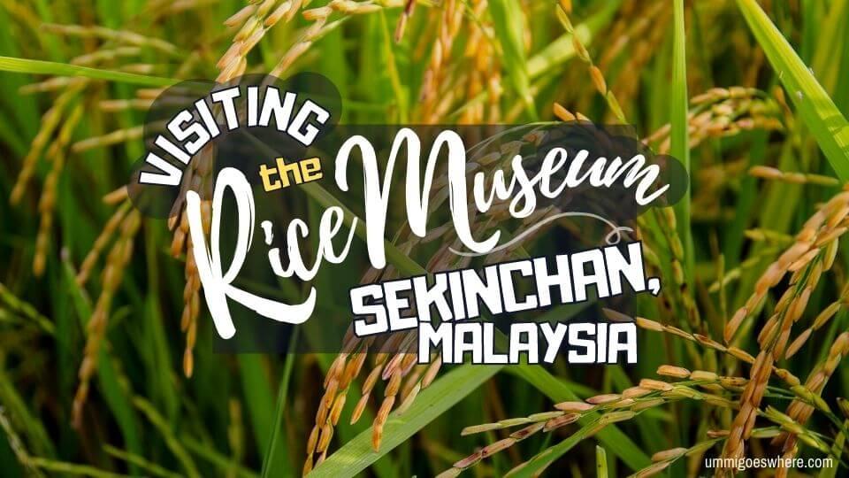 Paddy Museum, Sekinchan