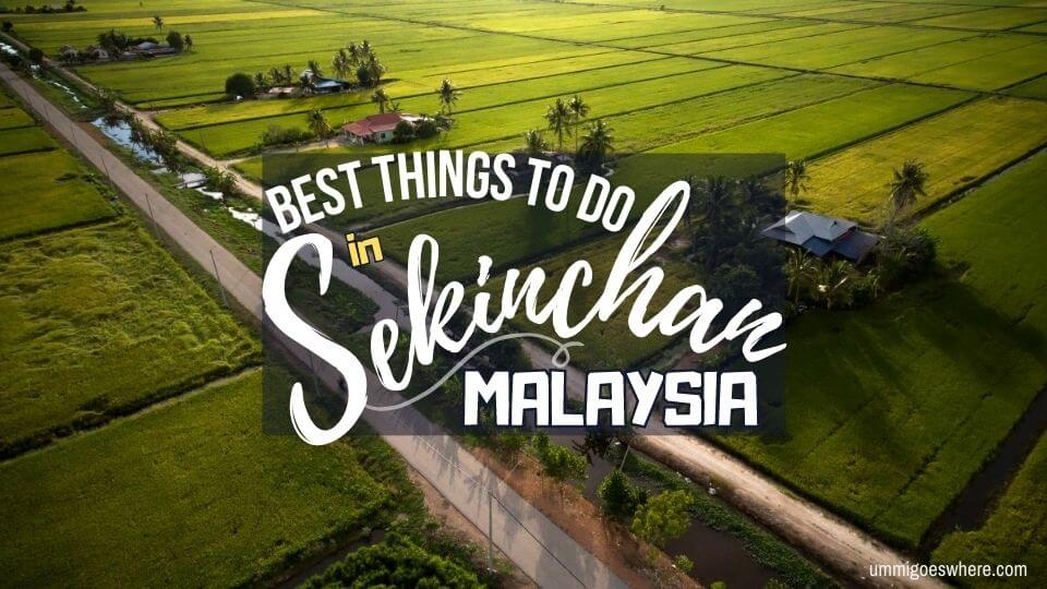 Best Things to do in Sekinchan Malaysia