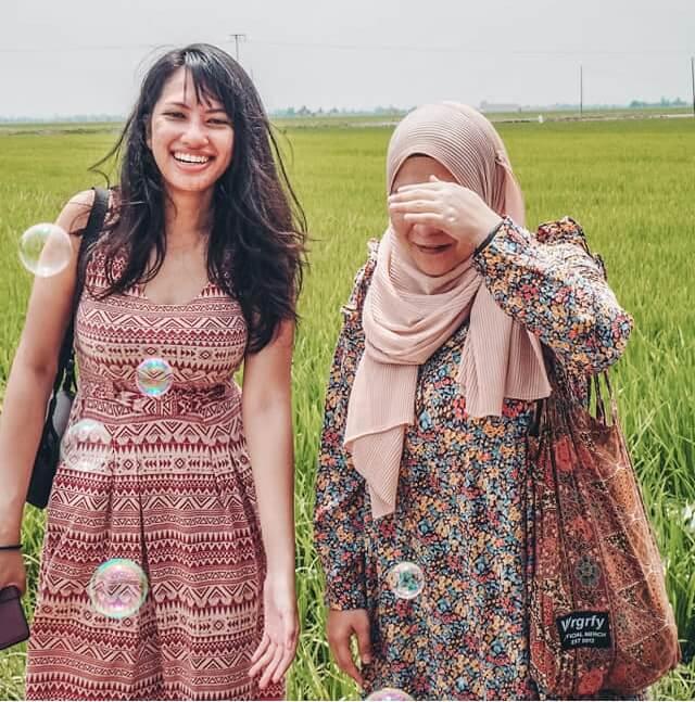 Sekinchan rice fields