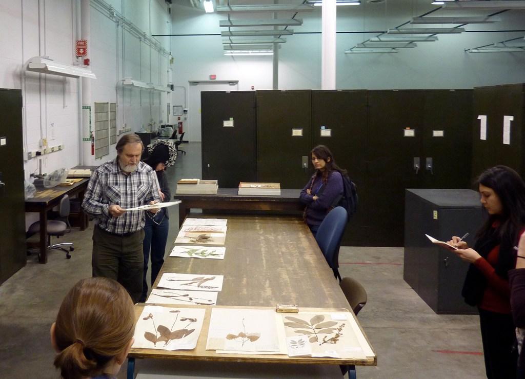 MSP10 with curator Tony Rezniek at the UM Herbarium