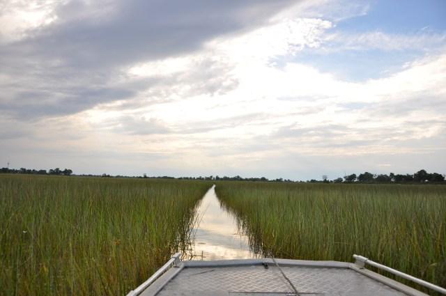 Os canais levam à lagoa dos hipopótamos