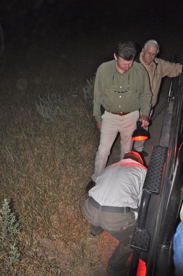 Trocando o pneu no final do safari