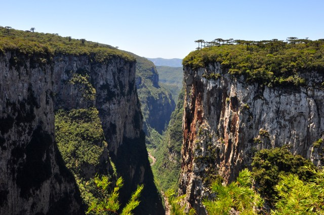 Rio Grande do Sul e Santa Catarina