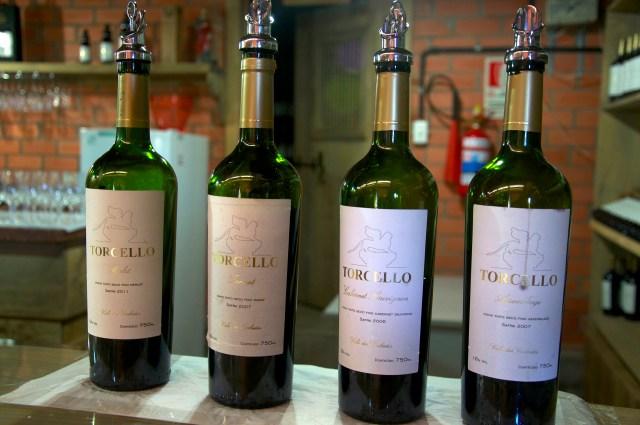 Degustação de vinhos na Vinícola Torcello.