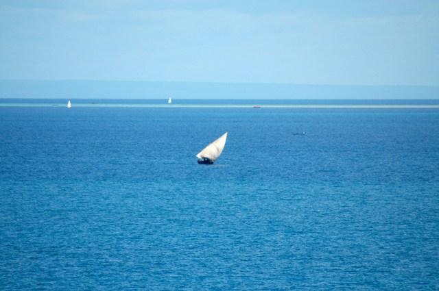O Azul de Zanzibar.