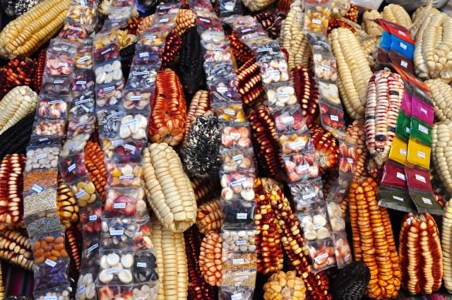 Diversos tipos de milho vendidos na feira livre.