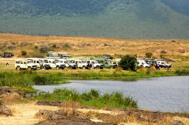 A Cratera do Ngorongoro.