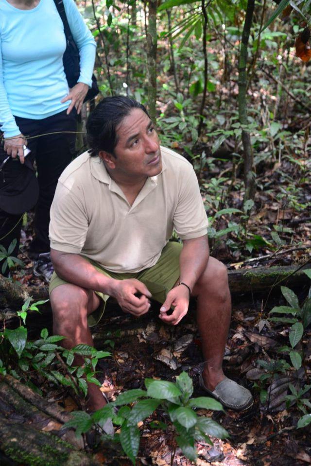 O guia/índio Piro, dando uma aula sobre a flora amazônica, no meio da floresta.