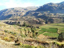 Vale del Colca - Peru
