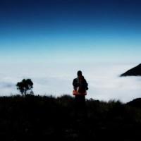 Um Viajante Poeta ou um Poeta Viajante?