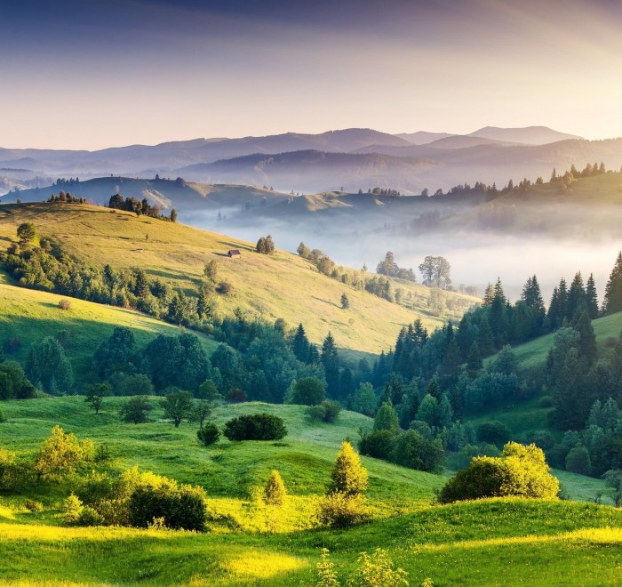 An image of rolling green hills by sathish_artisanz on Pixabay