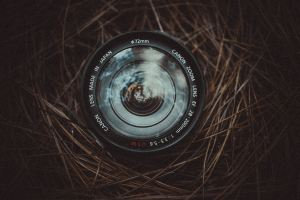 A picture of a camera lens in pine straw by Allef Vinicius on Unsplash