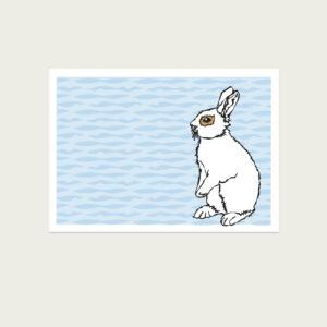 UMWERK - Tierkreiszeichen Postkarte HASE