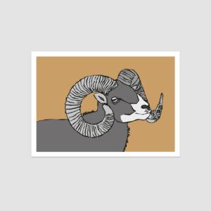 UMWERK - Sternzeichen Postkarte WIDDER