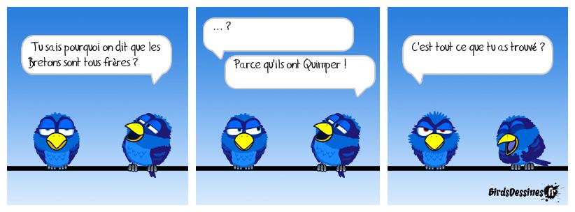 """Les oiseaux """"tout"""""""