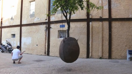 The Suspended Orange Tree is a landmark you may stumble upon in the Old City among the galleries that line its streets.