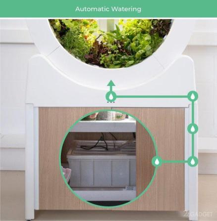 OGarden Smart – компактное устройство для выращивания различных культур прямо у вас в квартире. 4