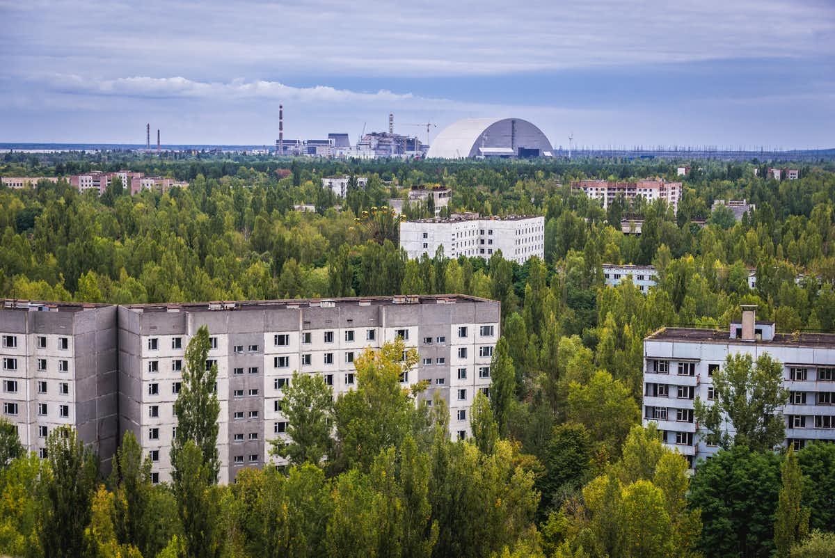Как растительность сумела выжить в Чернобыле? 1