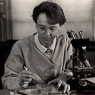 Перевернувшие ход науки. 10 женщин-ученых 8