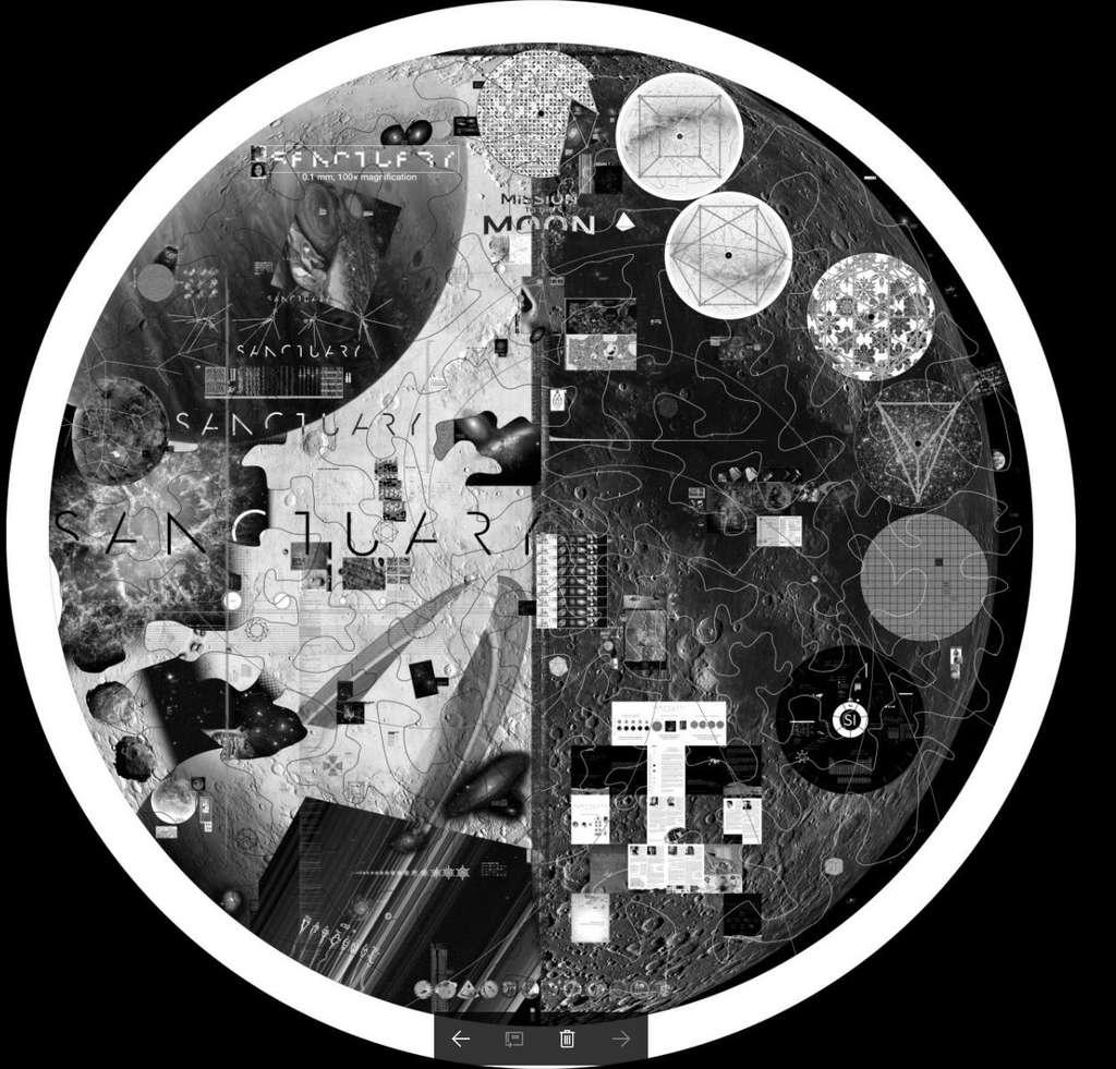 Проект «Sanctuary»: «Отправка генома мужчины и женщины на Луну». 5
