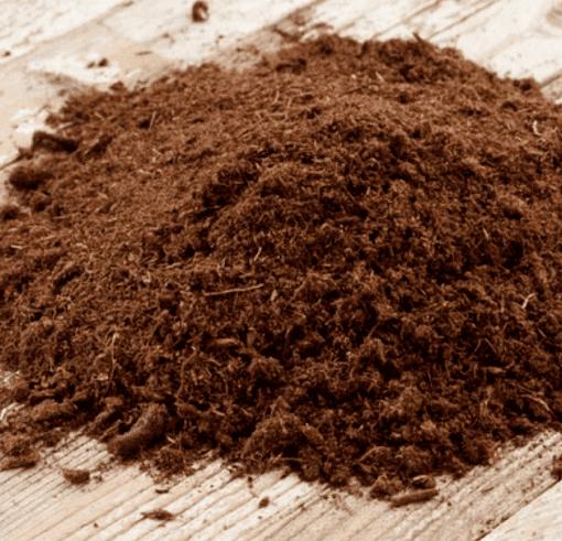 Из грязи – в лекарства: в торфе и угле нашли противовирусные вещества 7