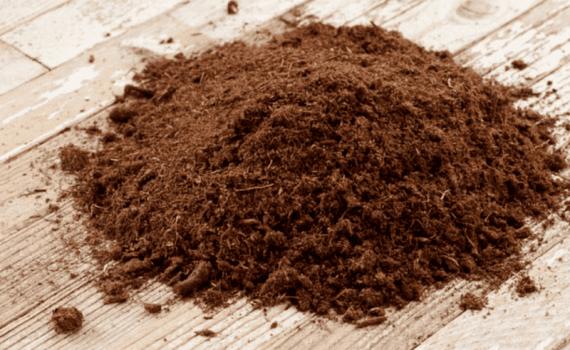 Из грязи – в лекарства: в торфе и угле нашли противовирусные вещества 1