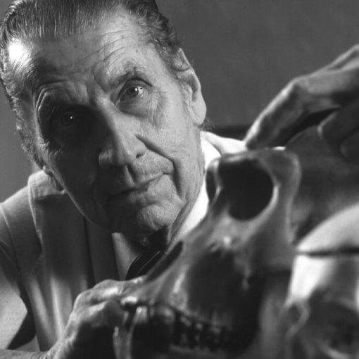 Управление мозгом по методу Хосе Дельгадо 7