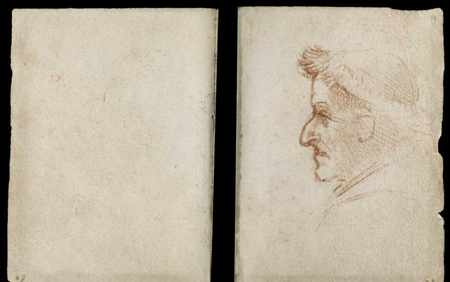 Научные книги Леонардо да Винчи выложили в открытый доступ 29
