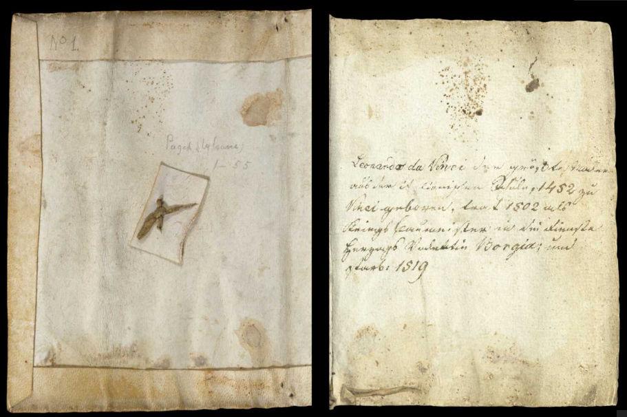 Научные книги Леонардо да Винчи выложили в открытый доступ 6