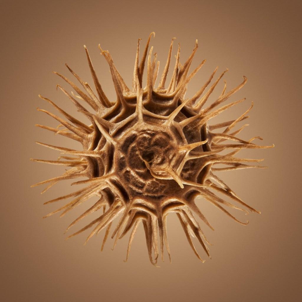 Удивительные детали экзотических семян под микроскопом 12