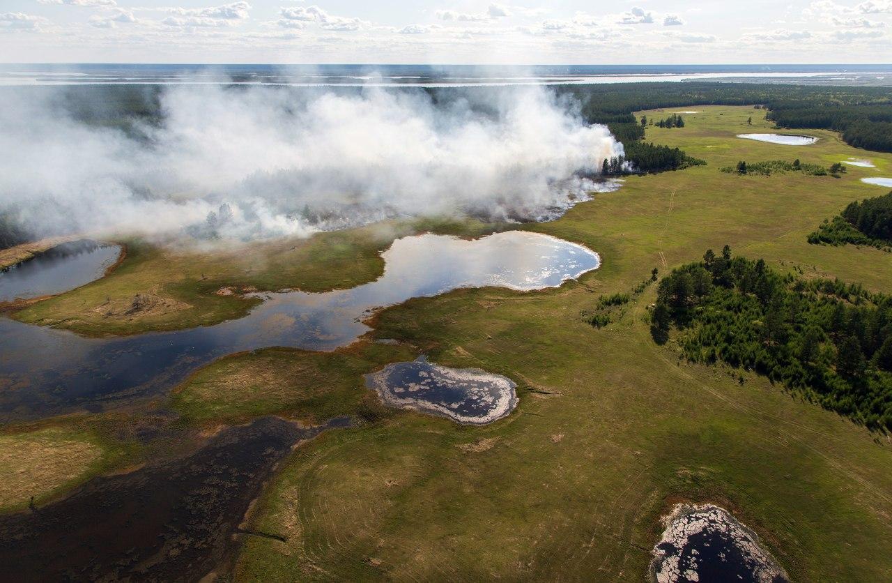 Рекордная жара и катастрофические пожары. Что происходит в Арктической Сибири? 1