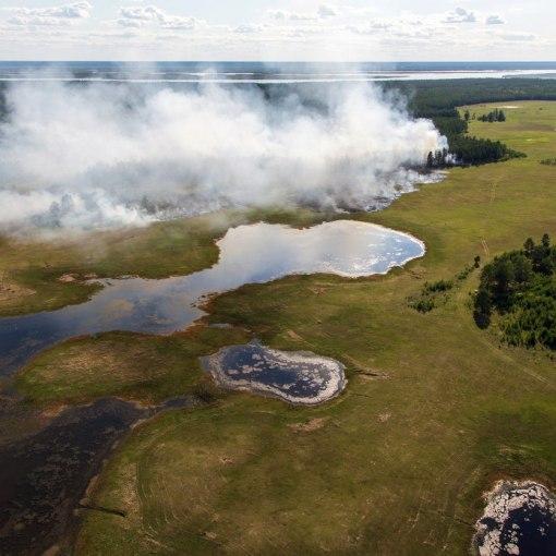 Рекордная жара и катастрофические пожары. Что происходит в Арктической Сибири? 4