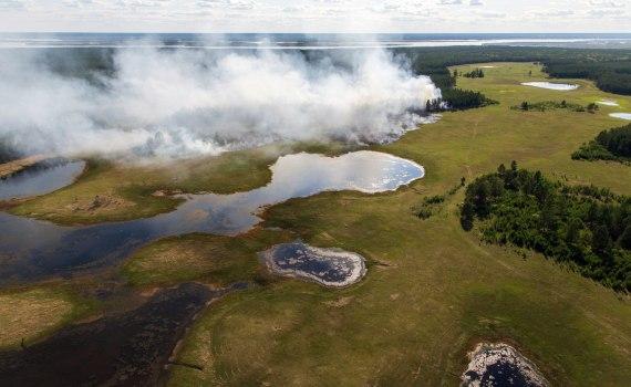 Рекордная жара и катастрофические пожары. Что происходит в Арктической Сибири? 11