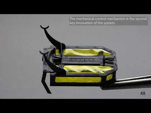 Микроробот, мышцы которого работают на метаноле 2