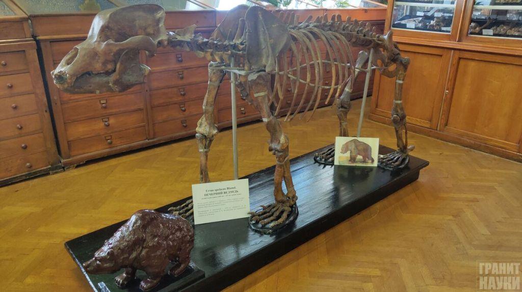 Палеонтологическая гордость Одессы. Фоторепортаж 7
