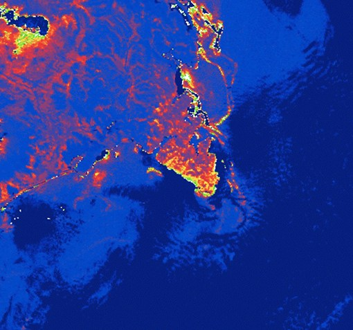 Опубликованы космические фотоснимки пострадавших от загрязнения прибрежных районов Камчатки 3