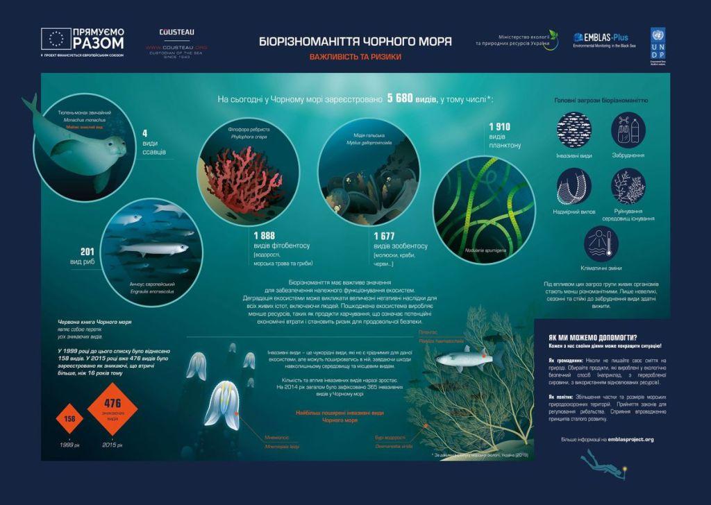 Чёрное море: уникальная и загадочная экосистема 3