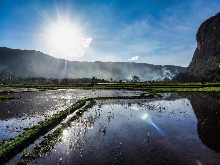 irrigation rizières sumatra
