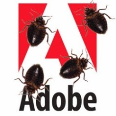 adobe-bug-exploits-vulnerability