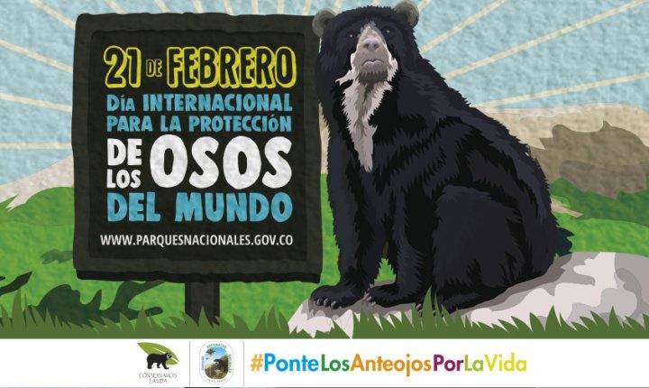 Día internacional para la protección del oso de anteojos
