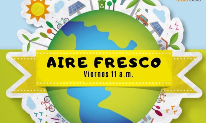 Aire Fresco 4