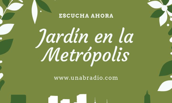 Jardín en la Metrópolis