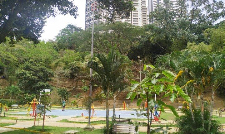 Falta mayor atención ciudadana en el Parque Los Leones