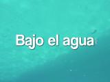 Documental: Bajo el agua