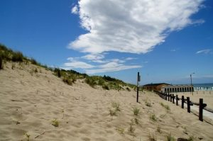 dune tirrenia-2