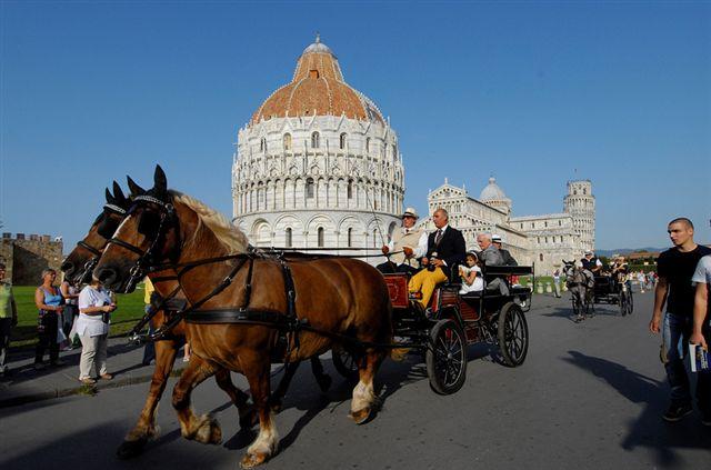 Interpellanza: Servizio carrozze per turisti trainate da cavalli e benessere animale