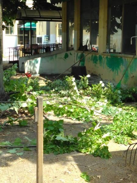 Interpellanza: Incarichi professionali per progetto su ex-asilo Coccapani