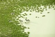 78353-6754882-Botswana_Bath_jpg1