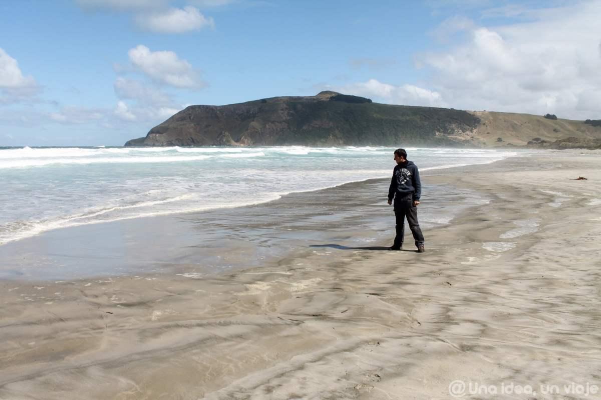nueva-zelanda-dunedin-peninsula-otago-unaideaunviaje-10