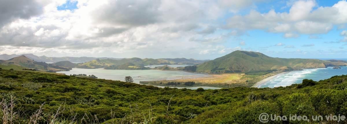 nueva-zelanda-dunedin-peninsula-otago-unaideaunviaje-18